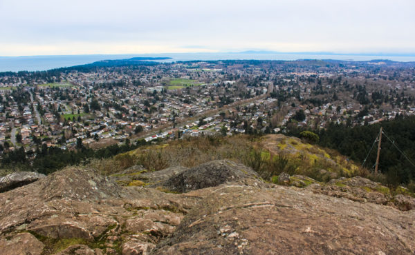 View from Mount Doug (PKOLS) –Brenna Waugh (photo)