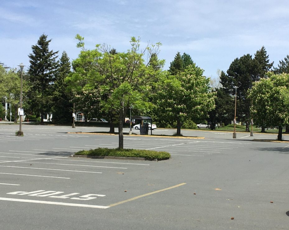 empty parking lot at UVic
